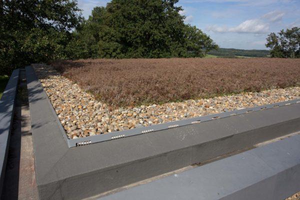 06 Pool House Spa sedum roof